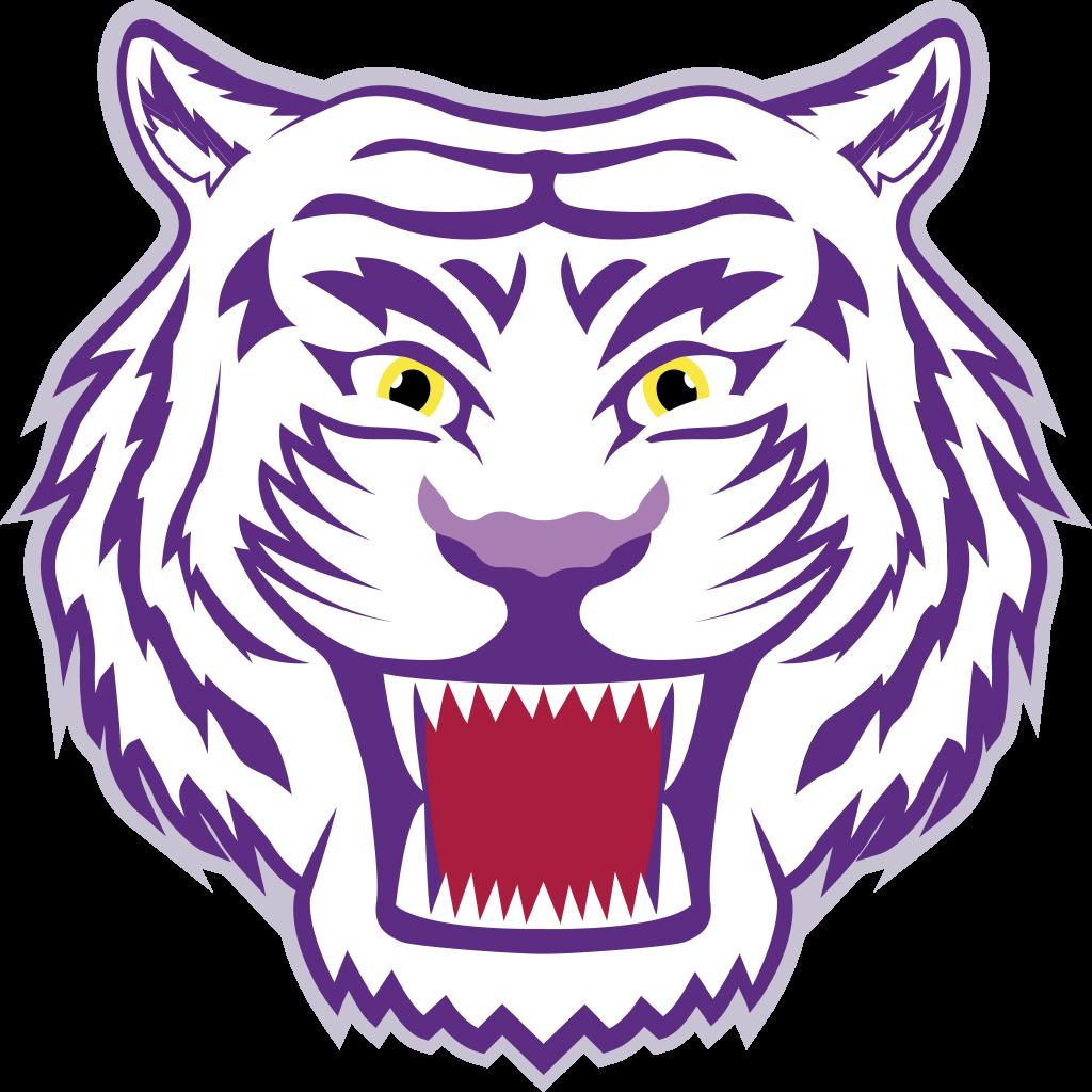 St. Bridget's Tigers logo